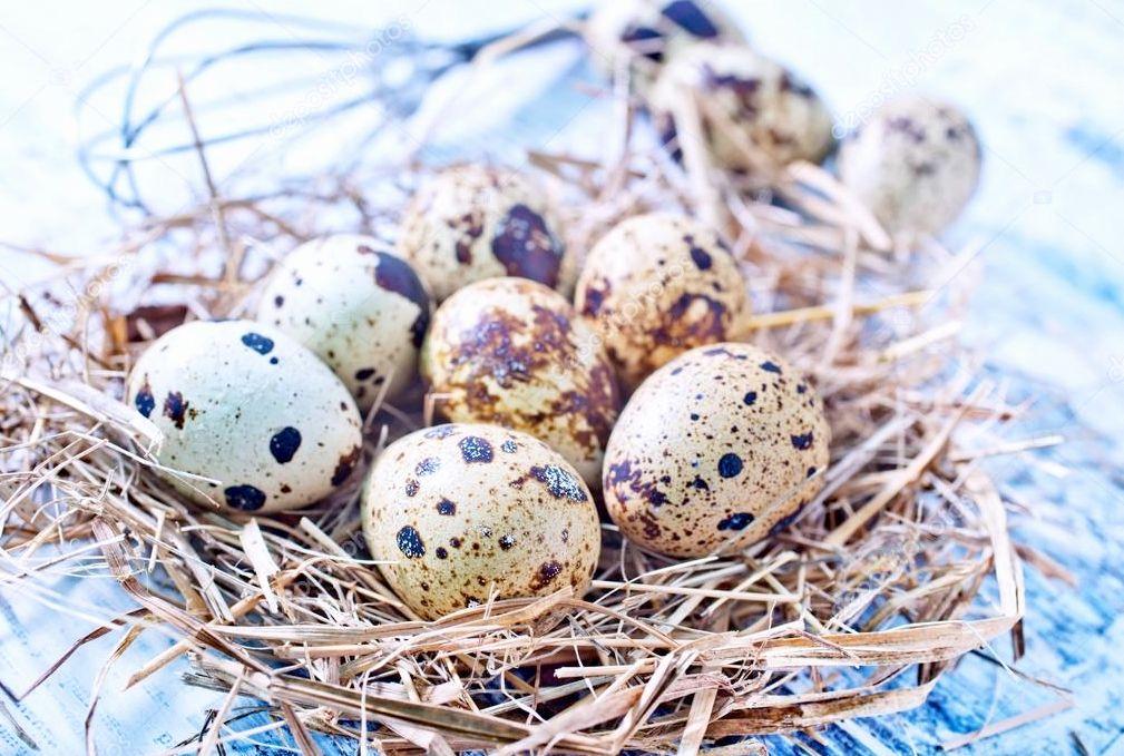 Перепелиные яйца в корзинке