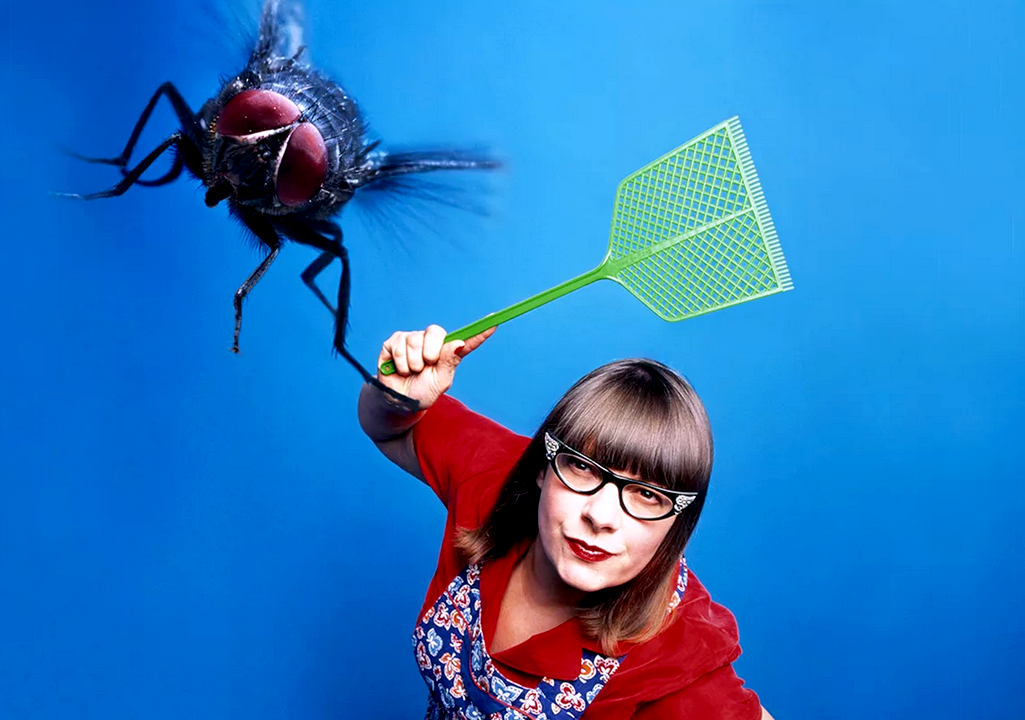 Как избавиться от мух и их личинок