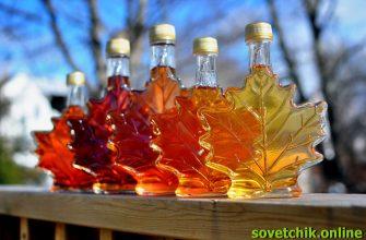 Как закатывать кленовый сок
