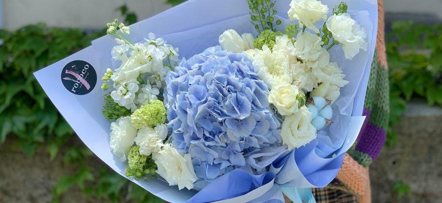 Гортензия: кому можно дарить эти цветы, согласно их знаечнию? 37