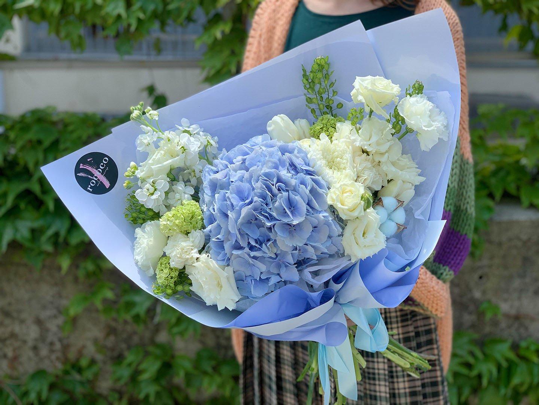 Гортензия: кому можно дарить эти цветы, согласно их знаечнию? 1